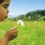 child_blowing_flower